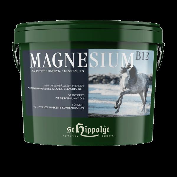 Magnesium B12 2,5 kg