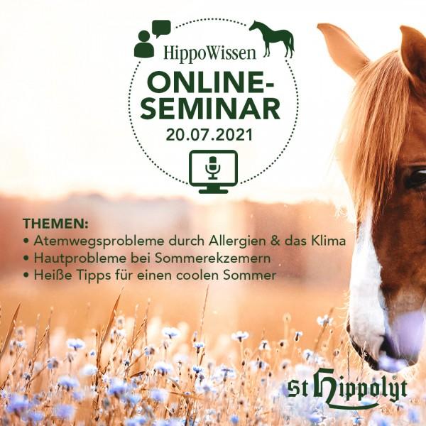 Sommerspezial_-OnlineSeminar_2