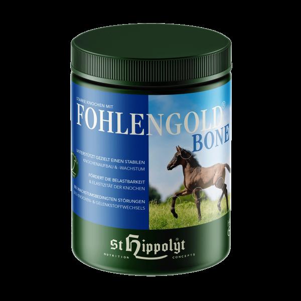Fohlengold Bone
