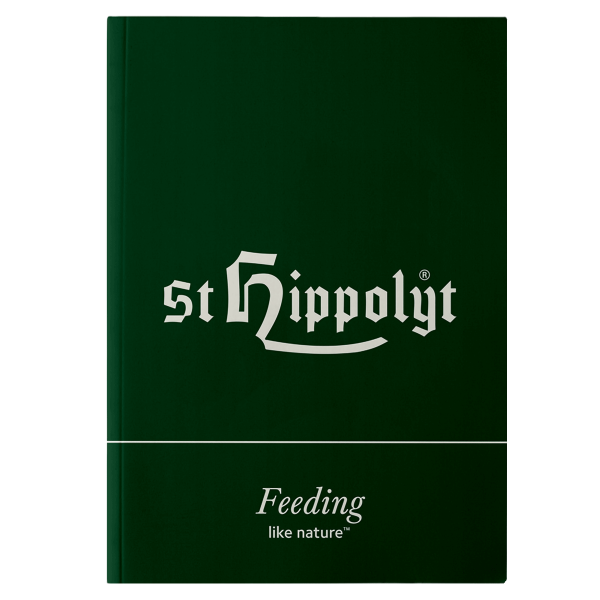 St. Hippolyt Notizbuch A5